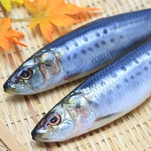 Silver Calcium ปลาซาดีน
