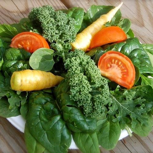 ผิวขาดคอลลาเจน กินผักใบเขียว